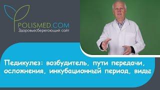 видео Лобковые вши: пути заражения , симптомы, лечение
