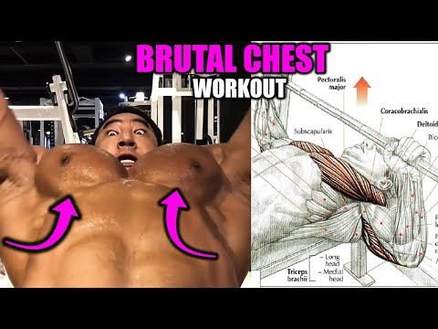 BRUTAL CHEST WORKOUT ✔️ 6 EXERCISES