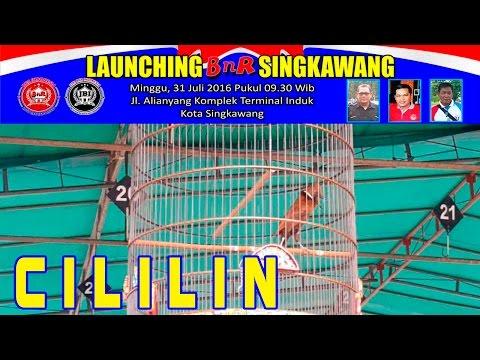 Kontes Burung CILILIN | Launching BnR Singkawang