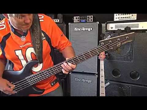 Bass Synth Wah/MTD USA Saratoga/TecAmpPuma1000 - Andy Irvine