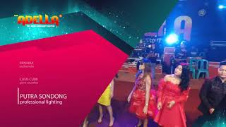 Om. ADELLA live Ngampo-Rembang SINGA MUDA | ELSA SAFIRA Campursarian
