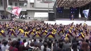 20161118長崎大学突風 長大学祭 ソーラン節 thumbnail