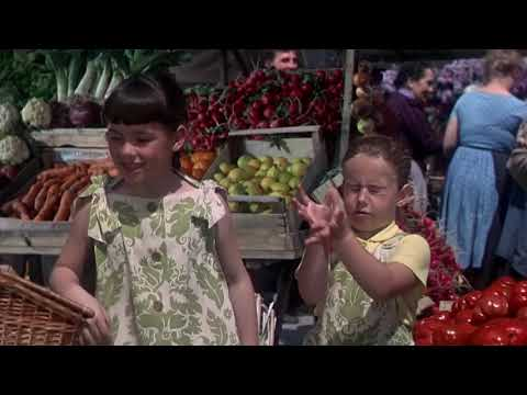 The Sound of Music - My Favorite Things(Instrumental)