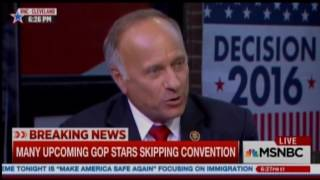 Steve King Asks: What Have Minorities Contributed To Civilization?