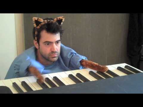 Keyboard Cat Redux