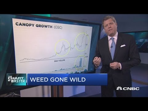 These pot stocks are getting even hotter, technician says