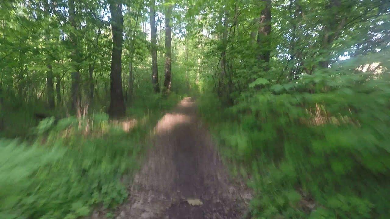 Онанисты видео смотреть онлайн в лесу, черные суют в рот молодым