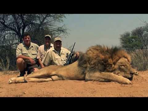 Mabula Pro Safaris - Lion hunt second