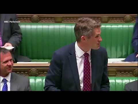 Gavin Williamson's own phone heckled him as he spoke about Isis