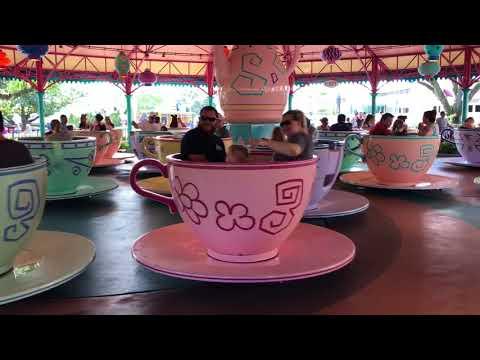 Walt Disney World Magic Kingdom Alice in Wonderland Mad Hatter Tea Party ~ Spinning Cups Ride