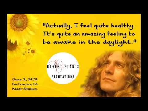 Robert Plant: Awake & Healthy