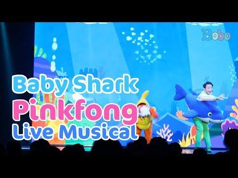 baby-shark---pinkfong-baby-shark-live-musical