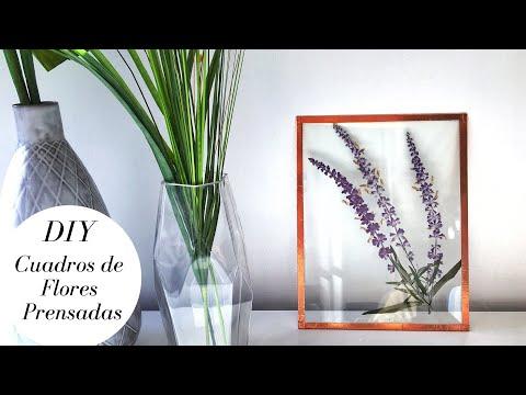 Crea un hermoso cuadro de Flores Prensadas de manera sencillaиз YouTube · Длительность: 5 мин36 с
