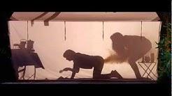 Austin Powers im Zelt *deutsch*