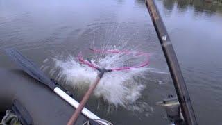 Короп на кивок, з човна в Ясенів Пільний