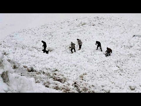 Siachen avalanche : 10 army soldiers missing, search operation on