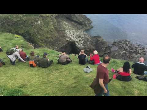 Fingal's Cave and the Puffins of Staffa