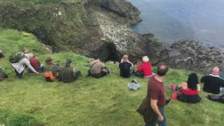 Fingal's Cave and the Puffins of Staffa - Stafaband