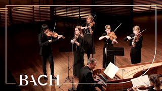 Bach - Air from Orchestral Suite No. 3 in D major BWV 1068 | Netherlands Bach Society