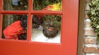 Sinterklaaslied: Daar wordt aan de deur geklopt