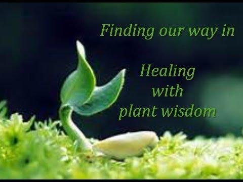 Healing with Plant wisdom