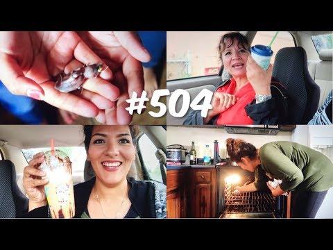 se-ayaron-un-pajarito!-cosinamos-las-costillas-de-puerco-!!-vlog-#-504