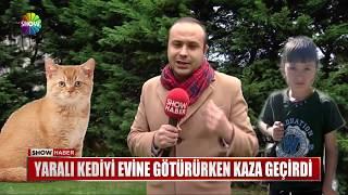 Yaralı kediyi evine götürürken kaza geçirdi