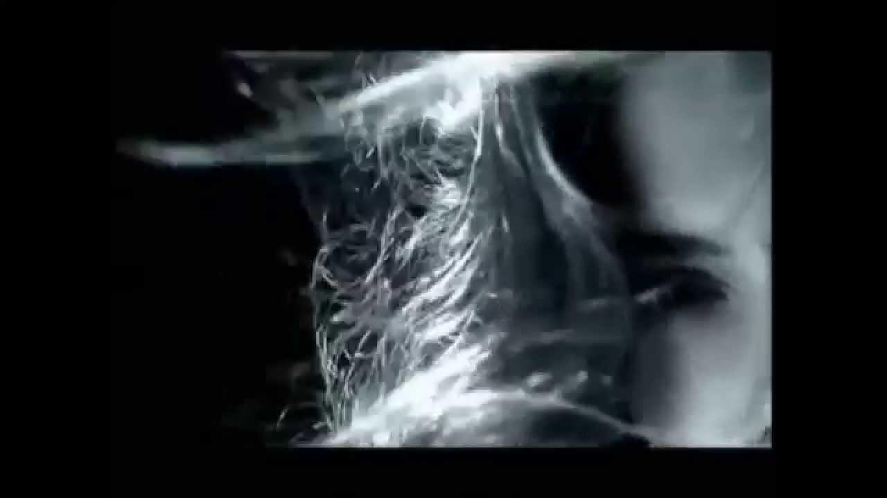 White apron john sokoloff - Rockin The Muse John Sokoloff Johnny Duarte