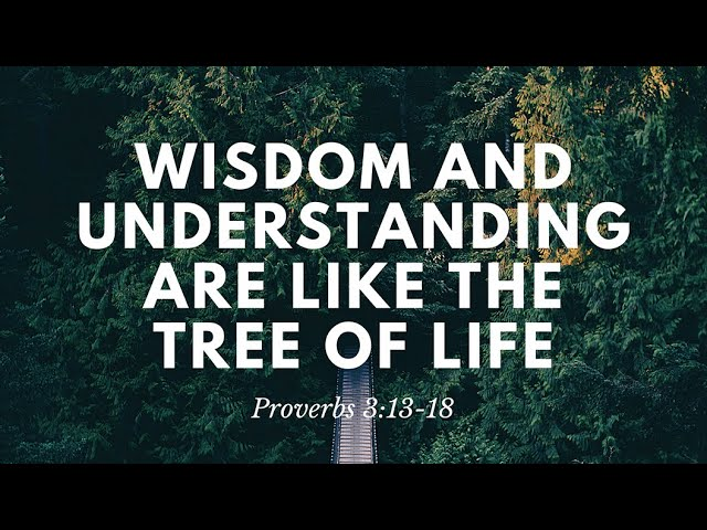 Wisdom and understanding are like the tree of life (Proverbs 3:13-18) | Rev. Andrew Pak