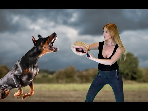 WORLD'S DEADLIEST PROTECTION GUARD DOGS - 50,000 THREAT KILLERS