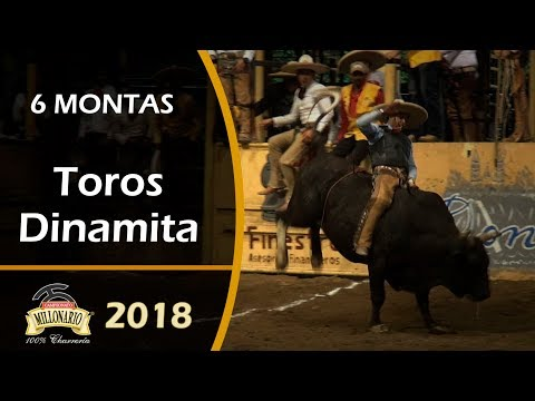 6 MONTAS DE TORO - Campeonato Millonario THV 2018