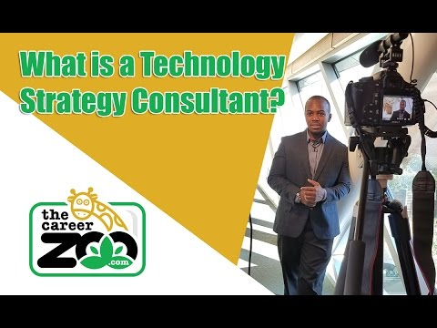 What is a Technology Strategy Consultant?