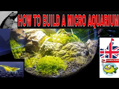 HOW TO MAKE  AN AQUARIUM CHECK OUT MY 2018 GIVE AWAY https://youtu.be/jWolYy64bQY