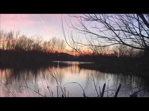 A Look Round Moss Nook Dayticket Water