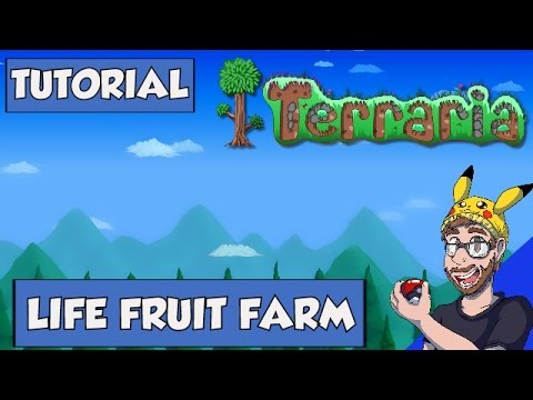 healthy dry fruits terraria life fruit