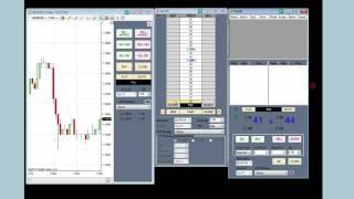 Trading Forex with NinjaTrader - NinjaTrader 7 Training - 12/23/2011