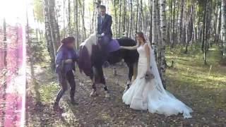 Как правильно забраться на лошадь в свадебном платье(инструкция для невест)