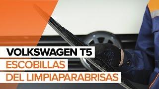 Cómo cambiar escobillas del limpiaparabrisas delantero en VOLKSWAGEN T5 INSTRUCCIÓN | AUTODOC