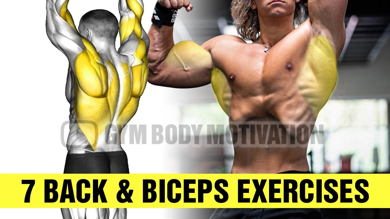 7 Exercises To Build Bigger Back and Biceps