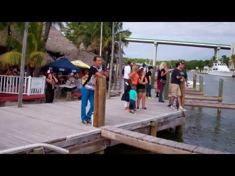 Keys Houseboat Rentals-Featuring Wisdom
