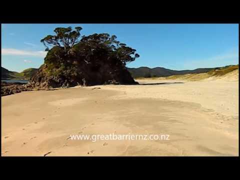 Medlands Beach, Oruawharo Bay