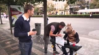 Музыкальная лошадь в Праге | Еврочекин
