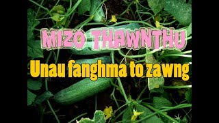 Mizo Thawnthu: Unau fanghma to zawng