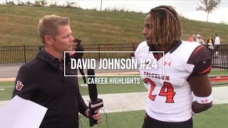 "David Johnson Career Highlight ""2-4"""