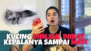 VIDEO PENYIKSAAN KUCING KECIL(KITTEN) YANG SEDANG VIRAL!!!