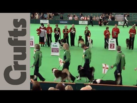 World Cup Obedience Part 12 - Crufts 2012