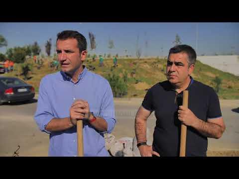 Puna për Pyllin Orbital - Top Channel Albania - News - Lajme