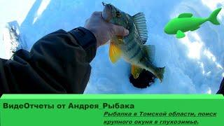 Рыбалка в Томской области, поиск крупного окуня в глухозимье.