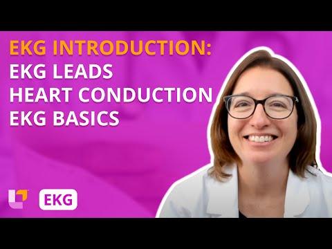 ekg-interpretation---introduction