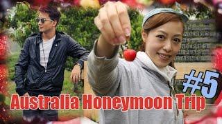 【臭俏蜜月遊澳洲#5】Tasmania自駕北上路線 蠔場果園睇古跡